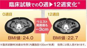 BMI減少率が高い本物のダイエットサプリとは何?