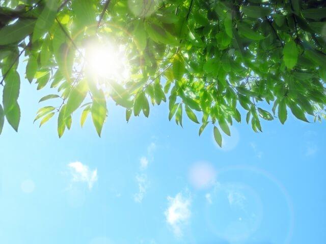 ニュートロックスサンは日焼け後の美白にも役立つ?
